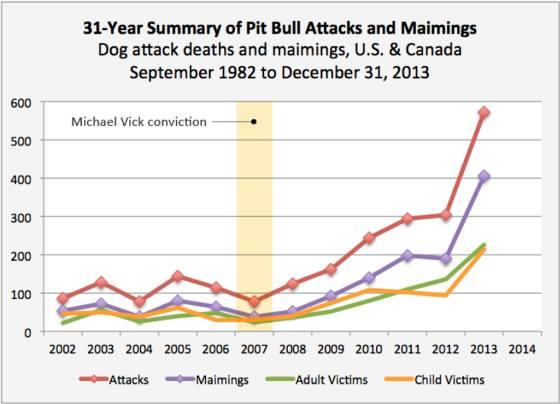 31-year-summary of pit bull attacks