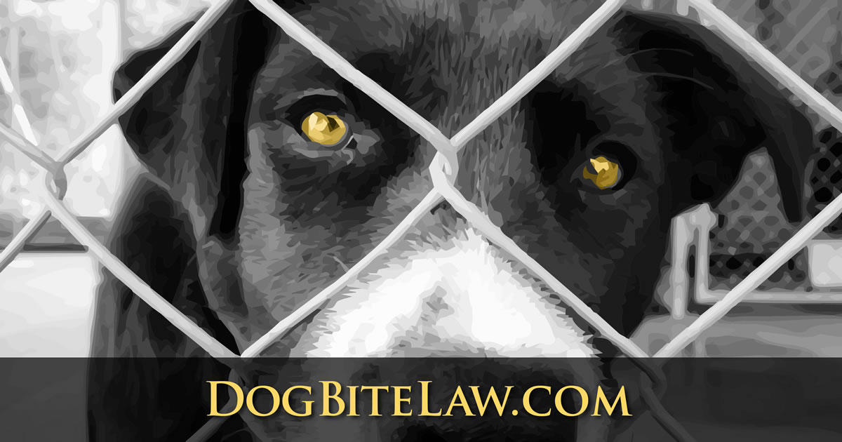 Pennsylvania Dog Bite Law