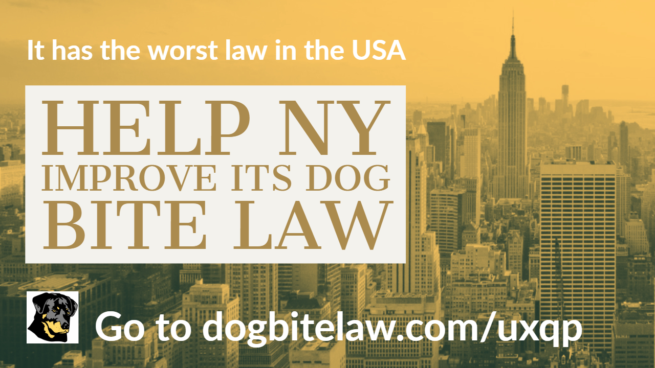 Help NY Improve Its Dog Bite Law - image
